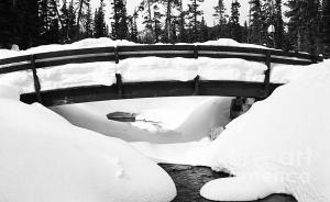 Snow Bridge For Sale